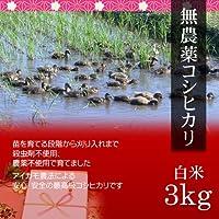 【お中元・夏ギフト】無農薬米コシヒカリ 3kg 白米・贈答箱入り/ギフトにアイガモ農法で育てた安全な新潟米