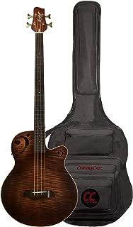 acoustic peavey guitars