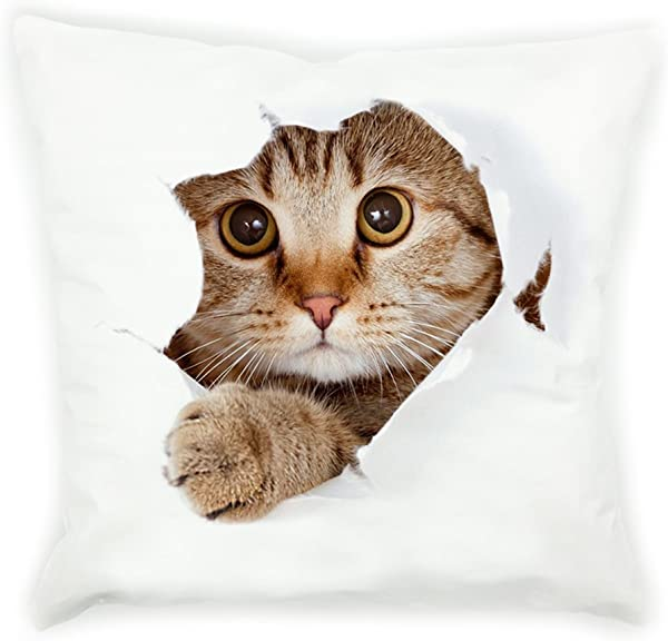 VIPbuy Super Soft Short Plush Square Decorative Throw Pillow Case Sofa Waist Cushion Cover 18 X 18 3D Cat