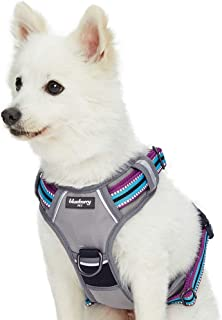 6 Best dog harness for Small, Medium and Large Breed 5