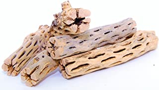 1010MikeNancy 5 Pieces of 6 Inch Long Natural Cholla Wood for Aquarium Decoration and Home Décor