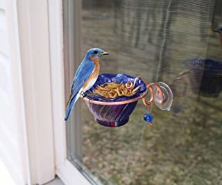 Songbird Essentials SEHHBBWF Copper Bluebird Mealworm Window Feeder (Set of 1)
