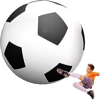 Best giant soccer ball Reviews