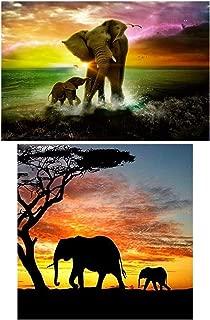 2Pack 5D Diamond Painting Kits Full Drill Diamond Embroidery (Elephant)