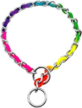 Didog - Stainless Steel P Choke Chain with Nylon Webbing - Rainbow Color for Training Dogs