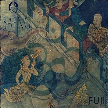 Fuji - EP