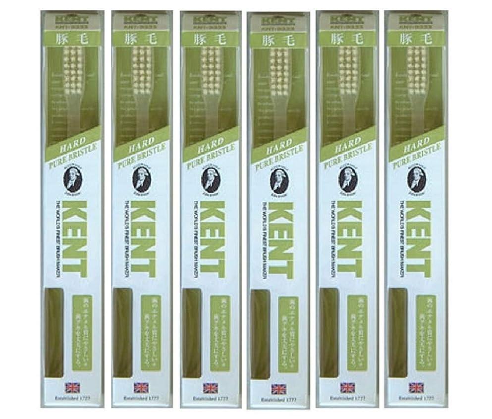 コンピューターを使用する手足種類【6本セット】KENT 豚毛歯ブラシ KNT-9333 ラージヘッド かため