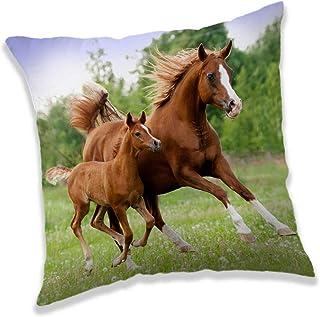 for-collectors-only Coussin décoratif des deux côtés - Motif cheval marron avec poulain - 40 x 40 cm