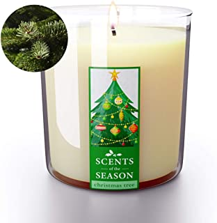 Christmas Scented Candles Fraser Fir Christmas Tree | All-Natural Clean Soy Candle | Highly Scented | Delightful Home Fragrance | Extra Long Burning | 12.5 oz Jar | Hand Made in The USA