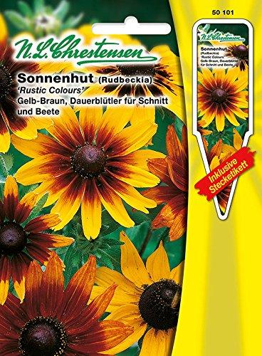 Sonnenhut 'Rustic Colours' gelb-braun, Dauerblüher, dekorativ, zum Schnitt geeignet (mit Stecketikett) ' Rudbeckia hirta'