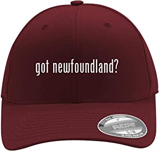 got Newfoundland? - Men's Flexfit Baseball Cap Hat