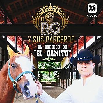 """El Corrido de """"El Gamito"""""""