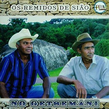 No Getsemani