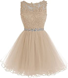 Short Tulle Homecoming Dresses Appliques Beads Prom Party Gowns