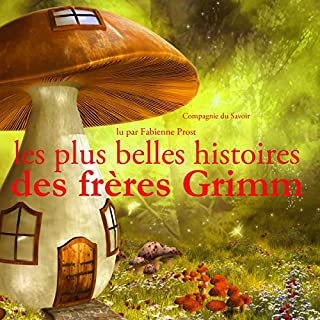 Couverture de Les plus belles histoires des frères Grimm
