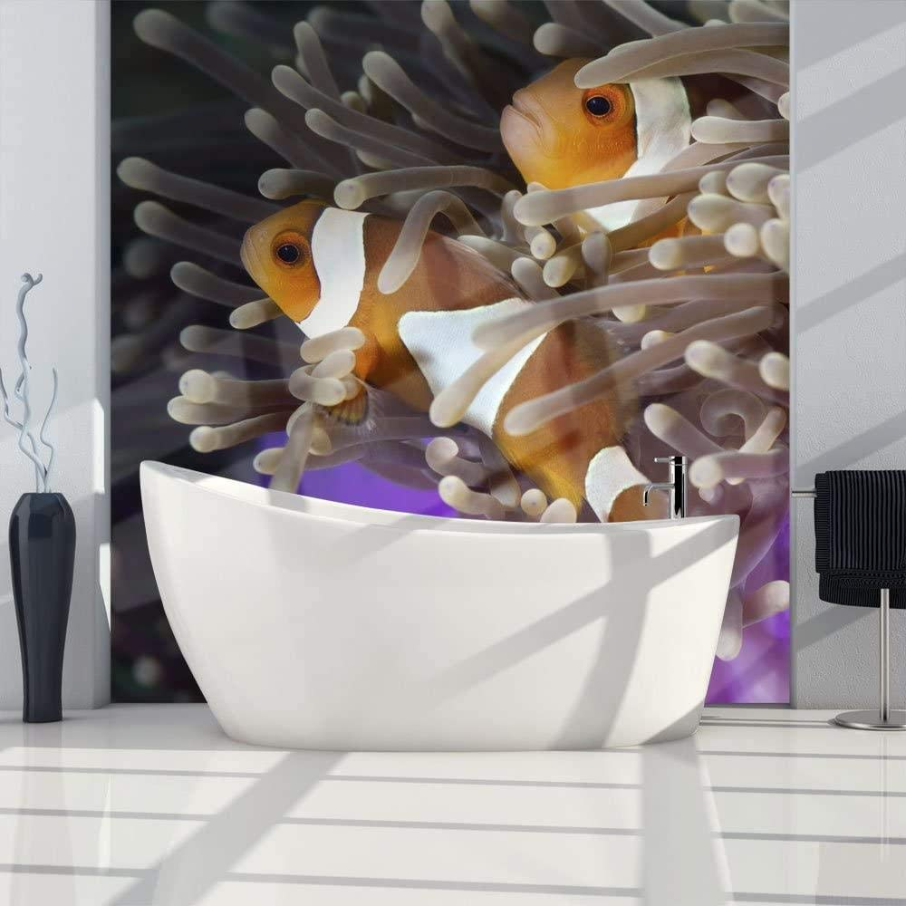 Louisville-Jefferson County Mall Mural Wall Photo 3D Modern New Shipping Free Shipping Clownfish-350x250CM Coral