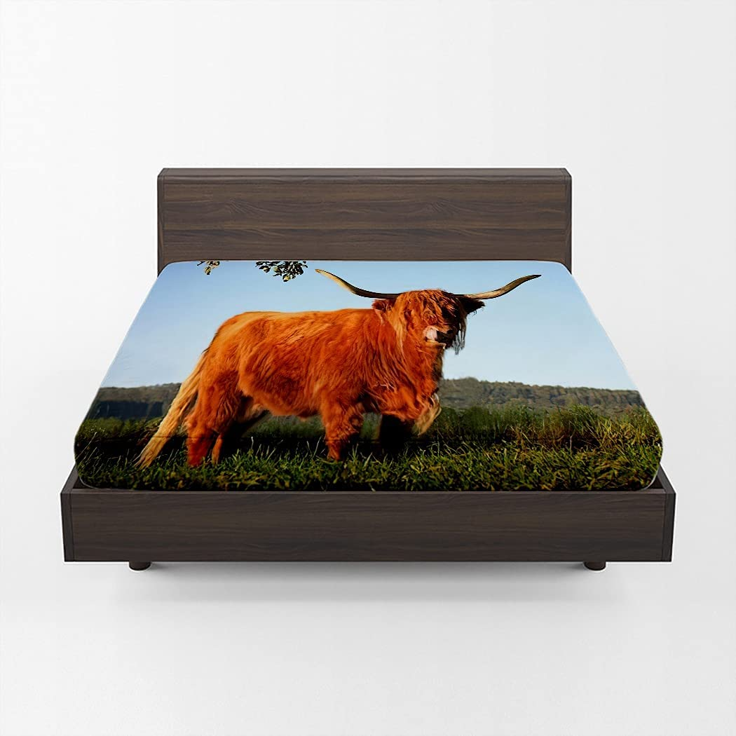 Huipaya Highland Cow Year-end annual account Memphis Mall Bull Fitted Eveni in Sheet Cattle