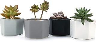 T4U 7CM 陶器ミニ植木鉢 六角形 マット表面 多肉植物 サボテン鉢 フラワーポット プランター容器 フルカラー 4個入り