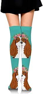18 Cavalier King Charles Spaniel Blenheim Perro Mujeres Sobre la rodilla Calcetines de muslo Medias altas 65 Cm / 25.6In