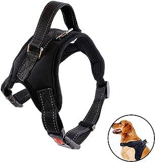 Accesorio para Viajar con tu Mascota Correa de Nylon Ajustable para Llevar a tu Perro en el Coche Cintur/ón de Seguridad Adaptable para arn/és y Funciona como Correa Dentro del Coche.