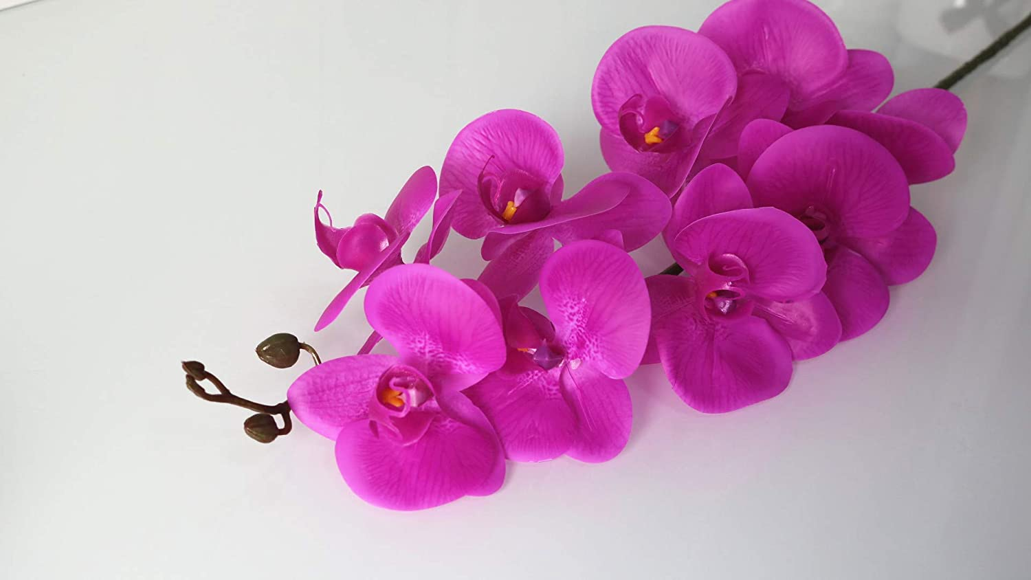 overseas ZKS-KS Artificial Flower Home Decor Phalaenopsis Large Silicone Limited time cheap sale