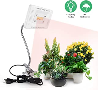 Best led desk lamp grow light Reviews