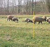 VOSS.farming 50m Weidezaun Elektrozaun-Netz, Schafzaun, Schafnetz, 90cm, 2 Spitzen, orange Weidezaun Netz Hundezaun