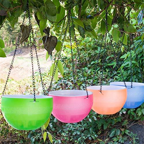 Xhtoe Caldero colgado 3 Piezas Cesta Colgante Multicolor Maceta Maceta de absorción de Agua Colgante Maceta de plástico Transparente Jardineras Colgantes para Plantas de Interior