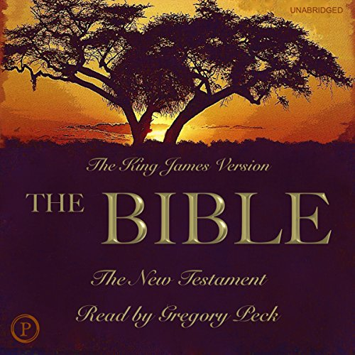The Bible: The New Testament audiobook cover art