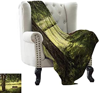 Travel Blanket Tree,Wooden Bench Under Lush Shady Big Tree in The National Park Fresh Tranquil Scenery,Green Brown for Bed & Couch Sofa Easy Care 60