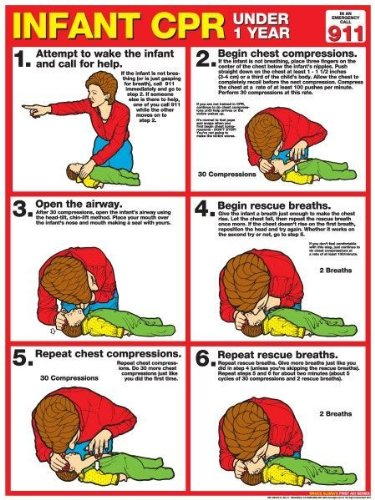 CPR for Infants 18' X 24' Laminated Poster - 2011