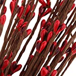 baosity 40 pieces artificial pip berry garland primitive pip berry wire rope garland holly berry branches diy wreath christmas holiday decor 65cm/25.6inch – red