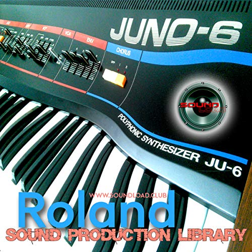 De Roland Juno-6 – Biblioteca de muestras de estudio Onda/Kontakt en 2 DVD o descarga