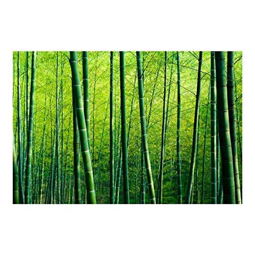 Bilderwelten Fotomural - Bamboo Forest - Mural apaisado papel pintado fotomurales murales pared papel para pared foto 3D mural pared barato decorativo, Dimensión Alto x Ancho: 225cm x 336cm