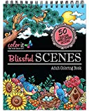 Blissful Scenes Adult Coloring Book - Features 50 Original Hand Drawn Designs Printed on Artist Quality Paper, Hardback Covers, Spiral Binding, Perforated Pages, Bonus Blotter