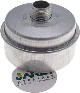 Jardiaffaires - Tubo de escape compatible para motor Briggs Stratton (sustituye a 394569S)