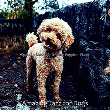 Spacious Music for Training Puppies - Piano