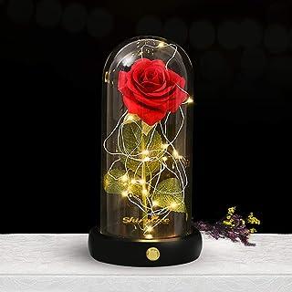shirylzee Rosas Bella y la Bestia, Kit de Rosa Encantada, Regalos para Día de Navidad, San Valentin, Cumpleaños, Boda, Aniversario, Magicos Decoración Elegante Cúpula de Cristal con Base Pino Luz LED