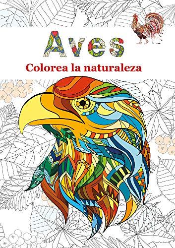 Aves: Colorea la naturaleza: 2 Loros y Otras aves