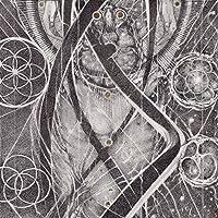 UROBORIC FORMS-THE COM [12 inch Analog]
