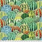 kaffe fassett Collective Wassermelonen-Stoff, 50 x 110 cm,