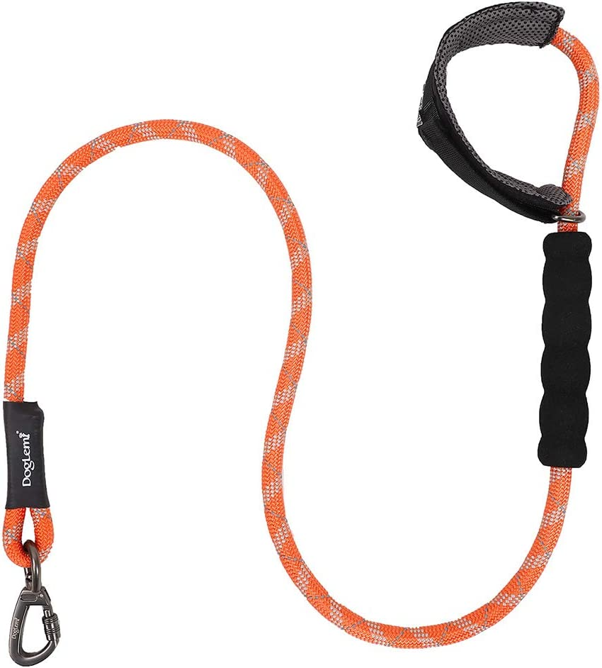 Indianapolis Mall Reflective Pet Leash with Dallas Mall Comfortable Runni Handle Padded Nylon