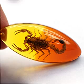 Amber Fossil Insect Artificial Amber Pendant Necklace Crystal Specimens Decorations For Home Collection Oval