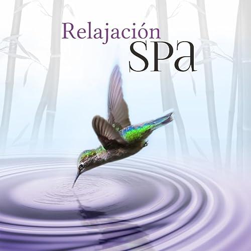 Relajación Spa - Sonidos de la Naturaleza, la Música para ...