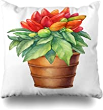 Ahawoso Throw Pillow Cover Square 20x20 Green Cayenne Hot Chili Pepper Capsicum Annuum Plant Food Drink Cut Nature Pink Chile Color Cuisine Decorative Pillowcase Home Decor Zippered Cushion Case
