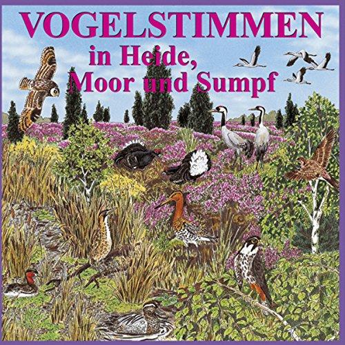 Vogelstimmen in Heide, Moor und Sumpf Titelbild