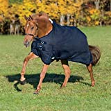 Rider's by Dover Saddlery Supreme Heavyweight Turnout Blanket - Navy/Navy, 64