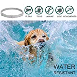 IMG-2 collare antipulci cane regolabile impermeabile