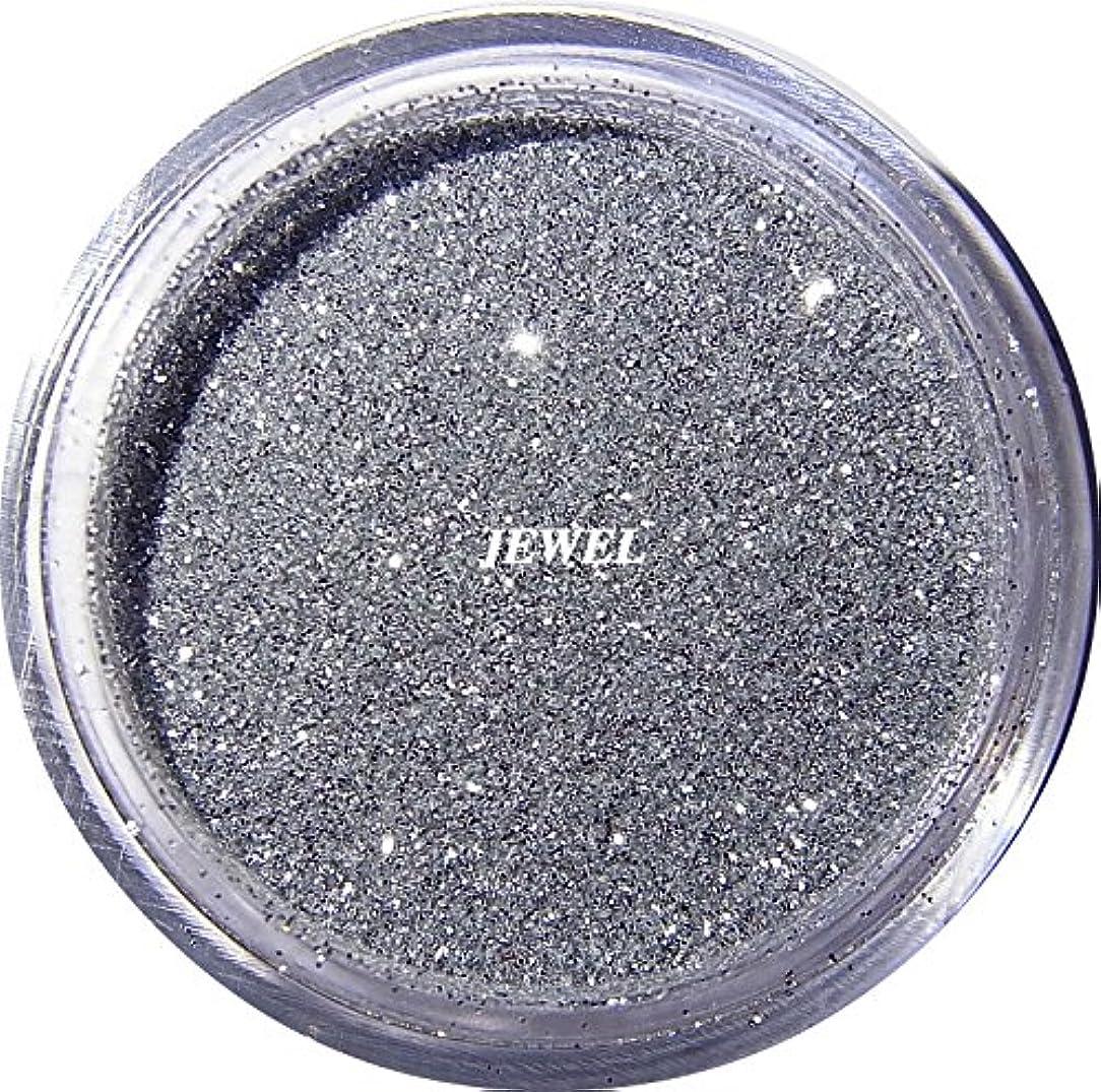 無意味時々簡単に【jewel】 超微粒子ラメパウダー(銀/シルバー) 256/1サイズ 2g入り レジン&ネイル用 グリッター