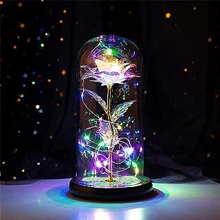 YEKKU Bella y la Bestia rosa, rosa encantada en cúpula de cristal LED luz USB lámpara de decoración de amor regalo para mu...